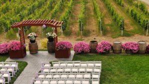 9 Mistakes Brides Make When Planning a Vineyard Wedding