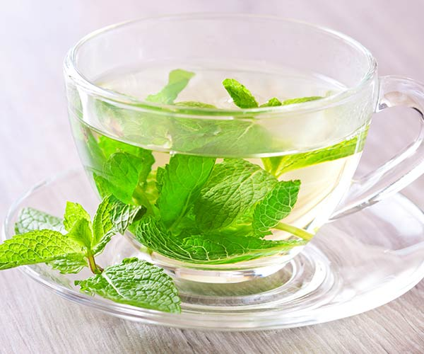 peppermint tea for thinning hair